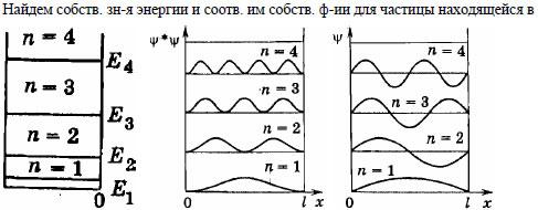 Атом водорода, находившийся первоначально в основном состоянии, поглотил квант света с энергией e =10,2 эв